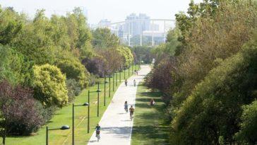 Парк в старом русле реки Турия – «зелёное сердце» Валенсии