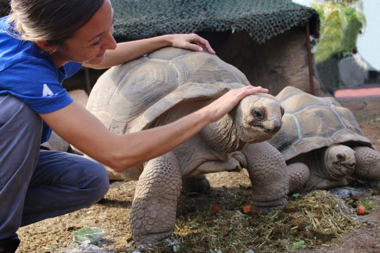 Океанографический парк получает престижную в мире аккредитацию по уходу за животными